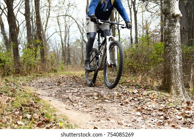 Person mountain biking along dirt trails in the woods.
