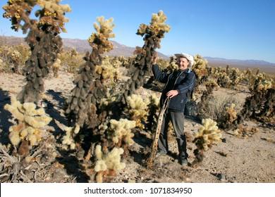 A person near the cactus. Cholla Cactus Garden in Joshua Tree National Park. Cholla Cactus Garden in Joshua Tree National Park