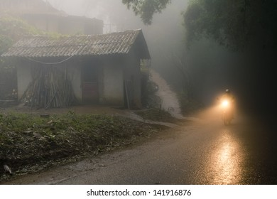 Person on bike riding through the misty forest