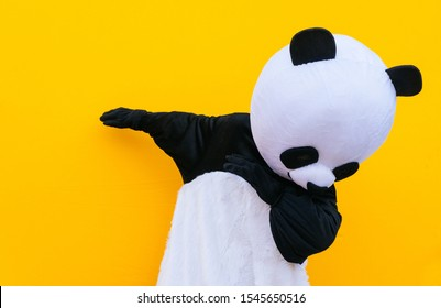Person with panda costume dancing dab dance. Mascot character lifestyle concept on colored background