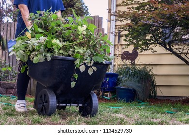 Person pushing a garden cart full of weeds