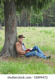 Person reads book, sitting in wood under a tree