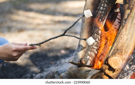 Person roasting marshmallows on a stick over a campfire while camping