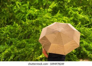 Person and umbrella in summer on green background.