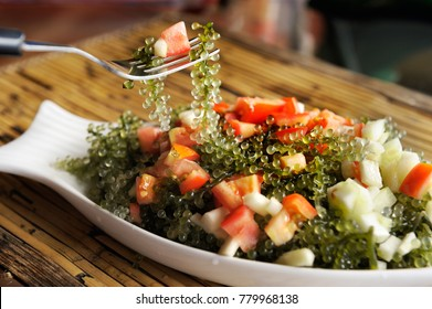 Person using fork to eat delicious Japanese salad with sea grapes of seaweed, apples, and tomatoes.