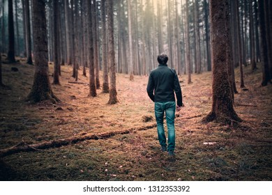 Person walking in the mysterious orange colored mossy forest landscape.