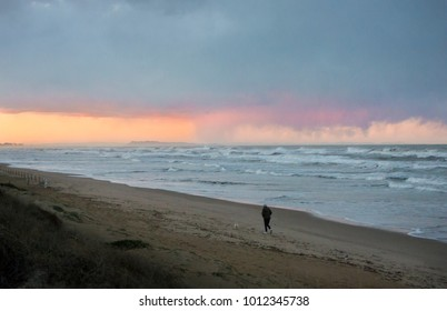 A person walking their dog on the beach on a stormy evening