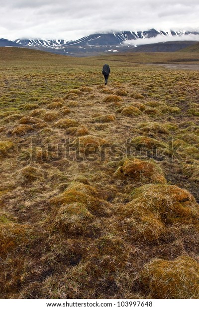 Person walking in tundra in the Svalbard archipelago (Arctic)