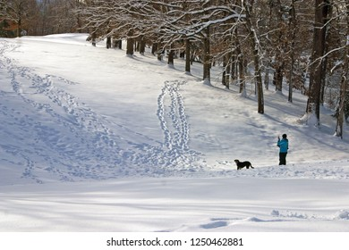 A person walks a dog through a scenic, snow covered landscape and stops to take photos with a cell phone