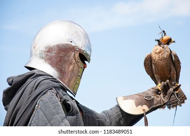 Person wearing a medieval helmet and carrying a peregrine falcon (Falco peregrinus)