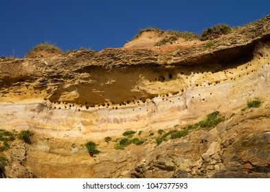Perspective from below of a high sandstone cliff by the beach packed with holes that are the swallow nesting places. Blue sky. Vila Nova de Milfontes, Portugal.