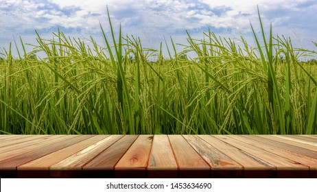 Perspective brown wooden board empty table in front of paddy field in morning time. for product placement or editing your product. Wooden board empty table perspective.