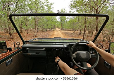 Perspective from inside a game ranger vehicle driving