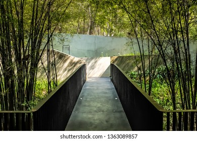 Perspective of pathway to garden with side of bamboo trees