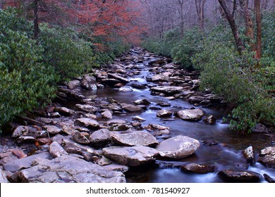 Perspective Photography of a River in the Woods of the Great Smoky Mountains Park.