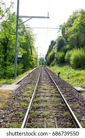 Perspective of railroad at Interlaken, Switzerland.
