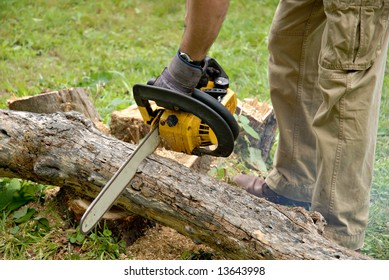 Perspective shot of a man cutting tree limbs.