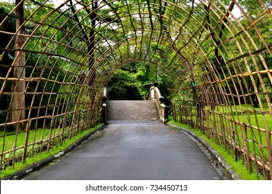 Perspective view of a bamboo arch in a park