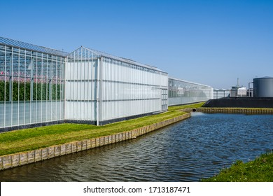 Perspective view of a modern high tech industrial greenhouse for tomatoes in the Westland, the Netherlands. Westland is a region in of the Netherlands.