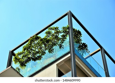 Perspective view of modern rooftop balcony with metal railings, glass and tropical plants against blue sky