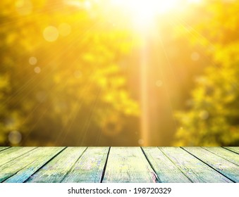 Perspective view on green leaves with sun ray in the forest