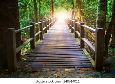 perspective of wood bridge in deep forest crossing water stream and glowing light at the end of wooden ways
