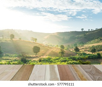 Perspective wood with mountain background
