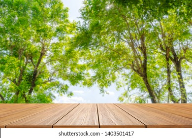 Perspective wood planks floor outside  blue sky and natural green tree background.