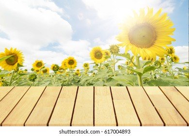 Perspective wooden table on top over blur sunflowers background, Empty table for Your photo, Great for summer products monatges display or design layout. .