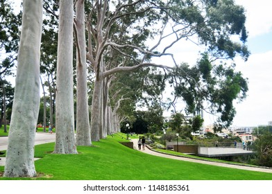 PERTH, AUSTRALIA - MAY 15 : People sit relax and picnic in Kings Park and Botanic Garden near National state war memorial cenotaph commemorates Western Australian on May 15, 2016 in Perth, Australia