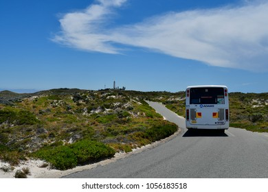 PERTH, WA, AUSTRALIA - NOVEMBER 27: Public bus for travel around Rottnest Island on ring road, Wadjemup lighthouse in background, on November 27, 2017 in Perth, Australia