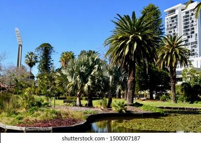 Perth, Western Australia, Australia. Aug 2019. A view of Queen's park in Perth, Western Australia.
