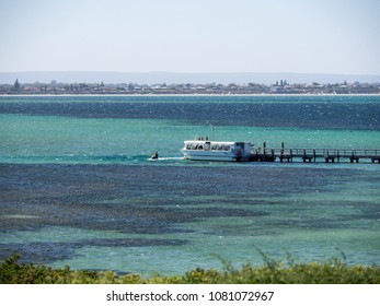 PERTH, WESTERN AUSTRALIA - March 11, 2018: Passenger ferry on Penguin Island.