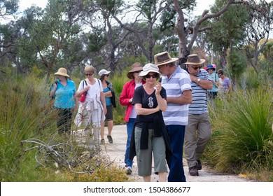 Perth, Western Australia / Australia - October 19 2012: Group of older people bush walking