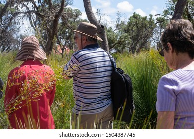 Perth, Western Australia / Australia - October 19 2012: Group of people bush walking