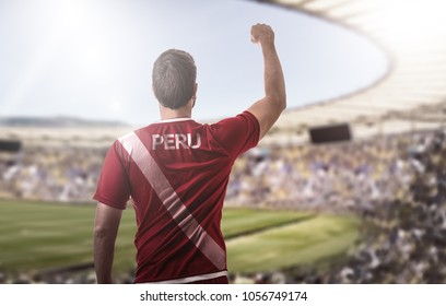 Peruvian fan celebrating in the stadium
