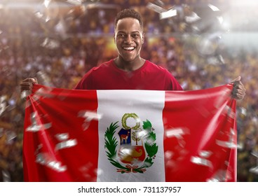Peruvian fan holding the national flag