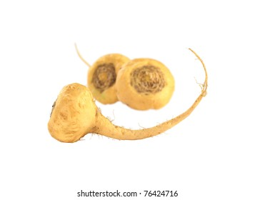 Peruvian Ginseng (Sp. Maca, lat. Lepidium meyenii) which is widely used in Peru for its various health effects and high nutritional value (Isolated) (Selective Focus, Focus on the root in the front)