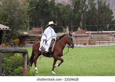 Peruvian Paso Horse Demonstration
