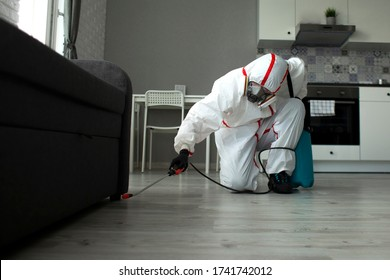 pest control. A worker in a protective suit cleans the room from cockroaches and rats with a spray gun, the sanitary service disinfects the apartment with a chemical agent