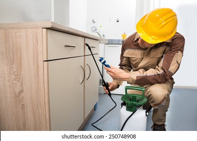 Pest Control Worker Spraying Pesticides On Wooden Drawer