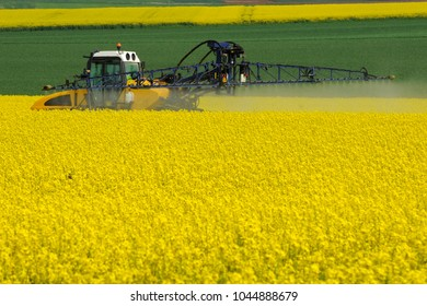 pesticide and insectiside spraying