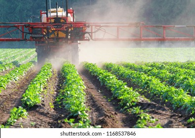 pesticide sprayer on a field with vegetables