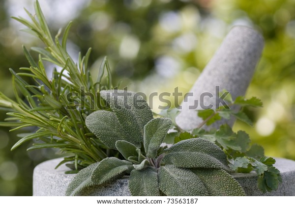 Pestle and mortar with herbs outdoor