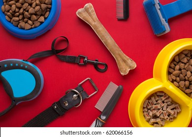 Pet accessories on red background. Top view