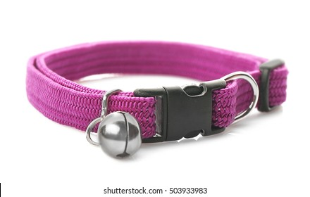 Pet collar on white background