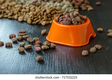 Pet food in bowl for cat and dog