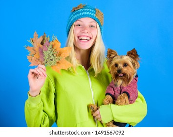Pet health tips for autumn. Girl hug cute dog and hold fallen leaves. Woman carry yorkshire terrier. Take care pet autumn. Veterinary medicine concept. Health care for dog pet. regular flea treatment.