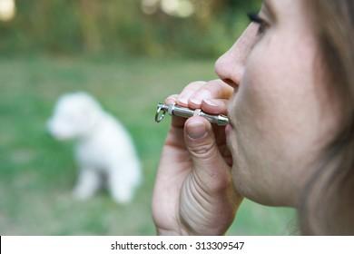Pet Owner Training Dog Using Whistle