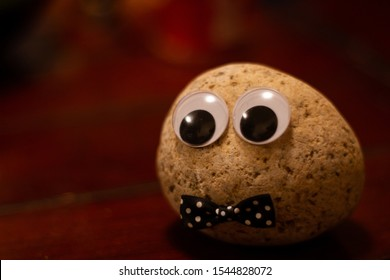 Pet rock dressed with a bowtie as a person
